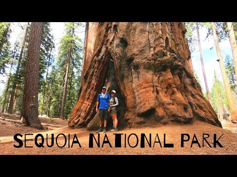 Directions & Transportation - Sequoia & Kings Canyon