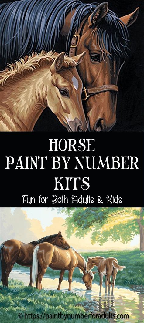 Horse Paint By Number Kits • Paint By Number For Adults